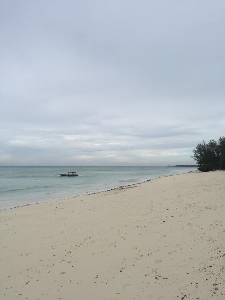 The Zanzibar Assassain